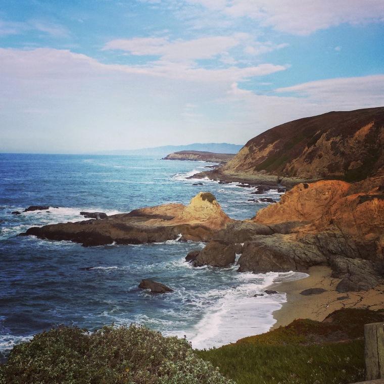 From my hike at Bodega Head in Bodega Bay, CA